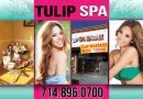 Tulip Spa Review